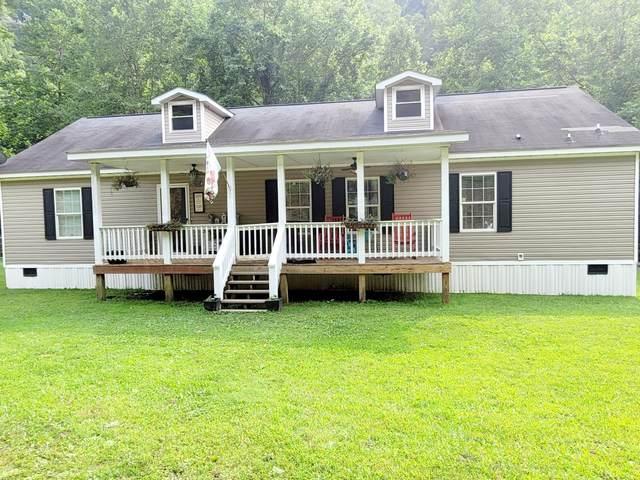 3600 Sandlick Road, Birchleaf, VA 24220 (MLS #9925894) :: Red Door Agency, LLC