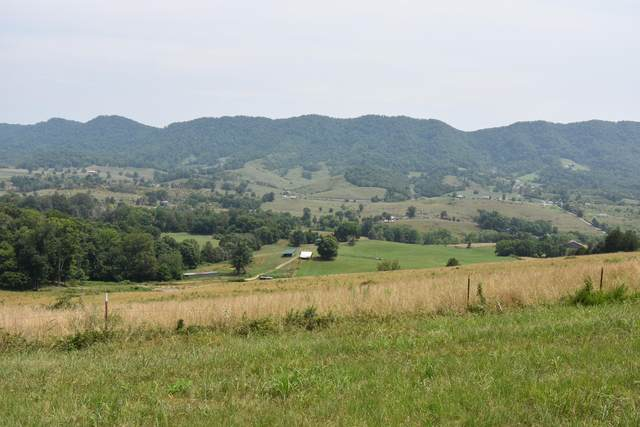 Tbd Wolfe Circle, Thorn Hill, TN 37881 (MLS #9925916) :: Tim Stout Group Tri-Cities