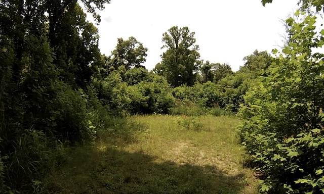 1213 Mays Ridge Road, Bulter, TN 37640 (MLS #9925955) :: Highlands Realty, Inc.