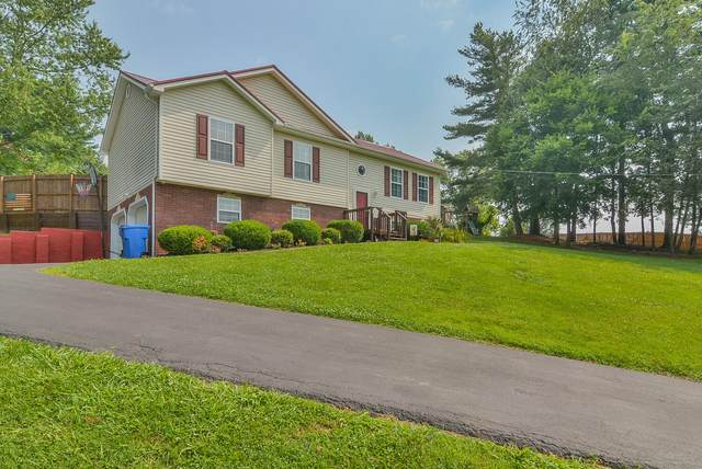 825 Shell Road, Jonesborough, TN 37659 (MLS #9925962) :: Highlands Realty, Inc.
