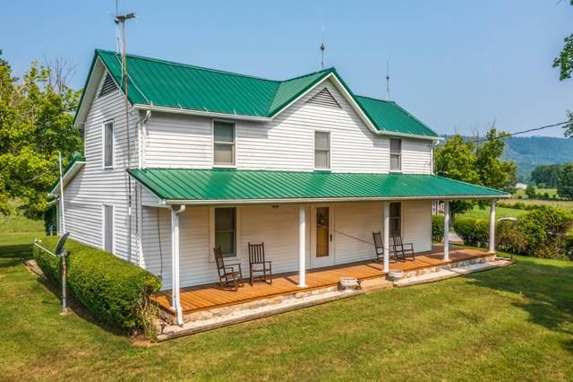295 Hemlock Trail, Greeneville, TN 37745 (MLS #9925966) :: Tim Stout Group Tri-Cities