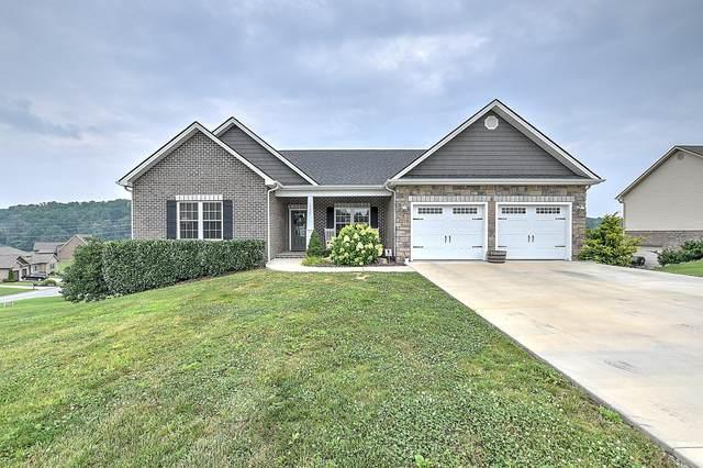 1133 Little Shadden Way, Gray, TN 37615 (MLS #9925968) :: Red Door Agency, LLC