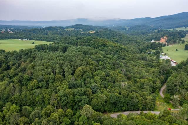 Tbd Highway 133, Shady Valley, TN 37688 (MLS #9926005) :: Conservus Real Estate Group
