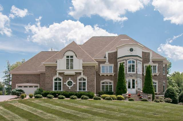 1128 Mountain Vista Pvt Drive, Bristol, TN 37620 (MLS #9926093) :: Highlands Realty, Inc.