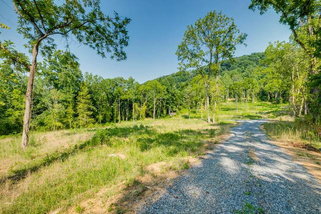 0 Carroll Creek Road, Johnson City, TN 37615 (MLS #9926111) :: Highlands Realty, Inc.