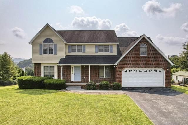 135 Hillendale Lane, Gray, TN 37615 (MLS #9926144) :: Red Door Agency, LLC
