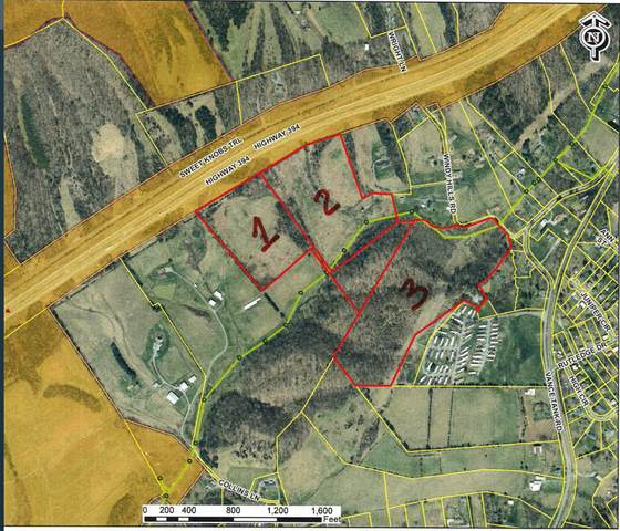 00 Windy Hills Road, Bristol, TN 37620 (MLS #9926199) :: Highlands Realty, Inc.