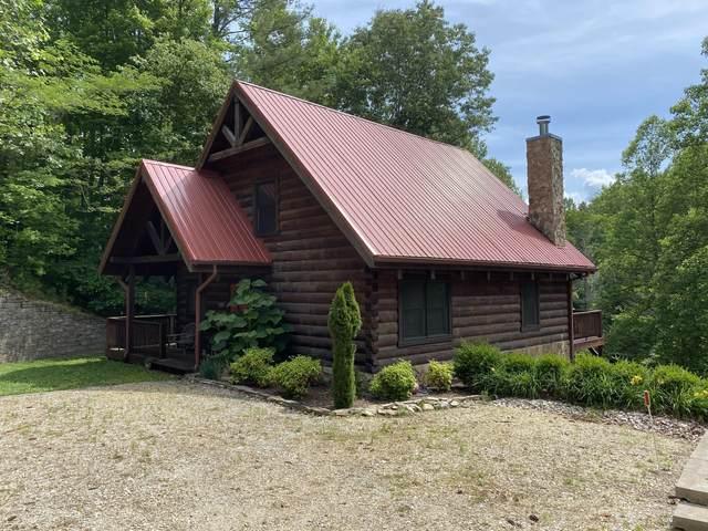 102 Oak Point Place, Butler, TN 37640 (MLS #9926202) :: Conservus Real Estate Group