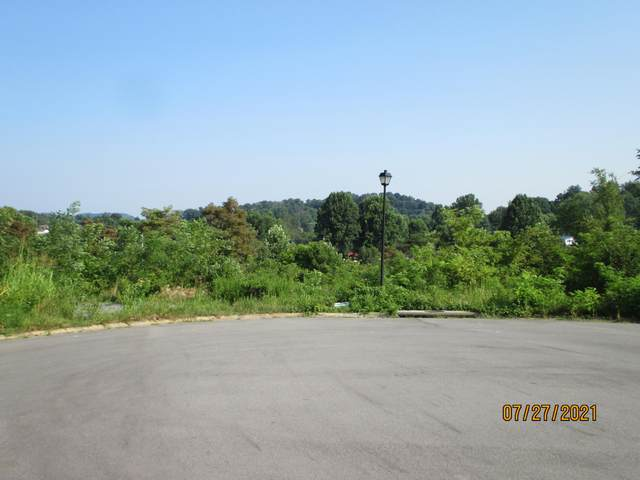 Lot 14a Roo Place, Bristol, VA 24201 (MLS #9926231) :: Highlands Realty, Inc.