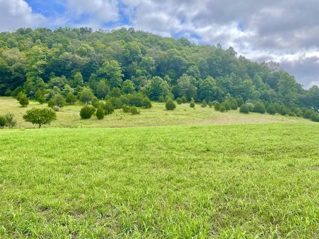 Tbd Copper Creek, Gate City, VA 24251 (MLS #9926236) :: Highlands Realty, Inc.
