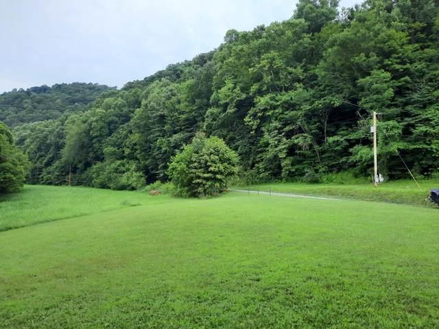 000 Waters Edge Road, Duffield, VA 24244 (MLS #9926257) :: Highlands Realty, Inc.