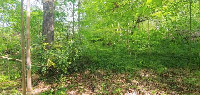 0 Woodgreen Lane, Kingsport, TN 37660 (MLS #9926278) :: Highlands Realty, Inc.