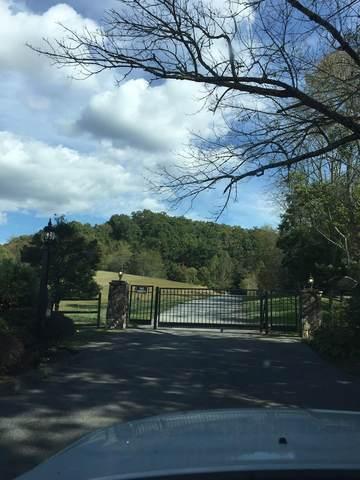 0000 Jade Woods Drive, Bristol, VA 24202 (MLS #9926312) :: Red Door Agency, LLC