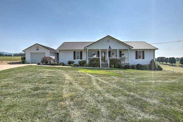 365 River Road, Greeneville, TN 37743 (MLS #9926316) :: Tim Stout Group Tri-Cities