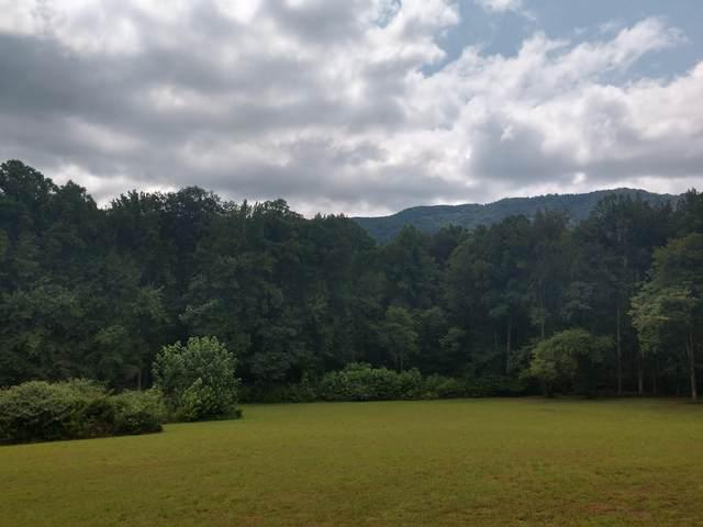 Tbd Screech Trail, Dryden, VA 24243 (MLS #9926422) :: The Lusk Team