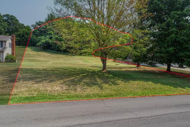 000 Sherbrooke South Circle, Mount Carmel, TN 37645 (MLS #9926442) :: Red Door Agency, LLC