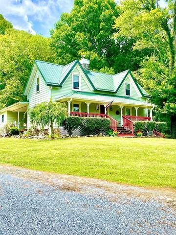 684 Hampton Creek Road, Roan Mountain, TN 37687 (MLS #9926471) :: Red Door Agency, LLC