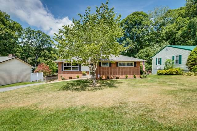 411 Holly Street, Mount Carmel, TN 37645 (MLS #9926509) :: Red Door Agency, LLC