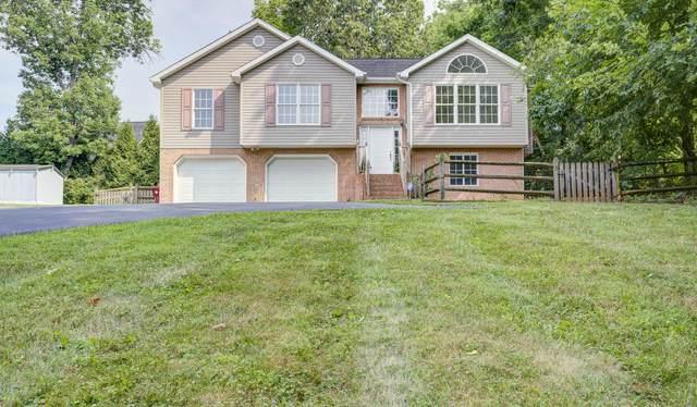 181 Cedar Point Road, Johnson City, TN 37601 (MLS #9926550) :: Conservus Real Estate Group