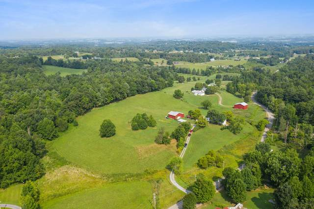 1526 Horse Creek Park Rd Road, Chuckey, TN 37641 (MLS #9926565) :: Highlands Realty, Inc.
