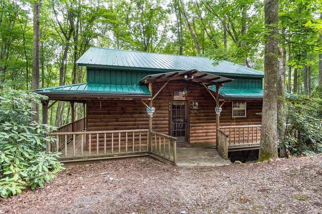 528 Gene Drive, Butler, TN 37640 (MLS #9926609) :: Conservus Real Estate Group