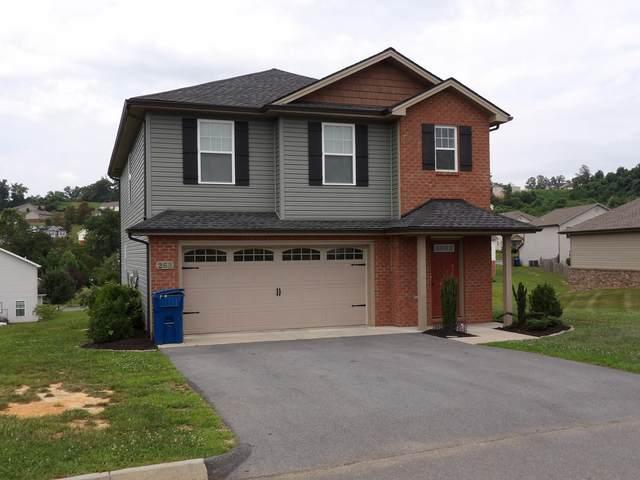 263 Miss Maude Patton Lane, Jonesborough, TN 37659 (MLS #9926639) :: Conservus Real Estate Group