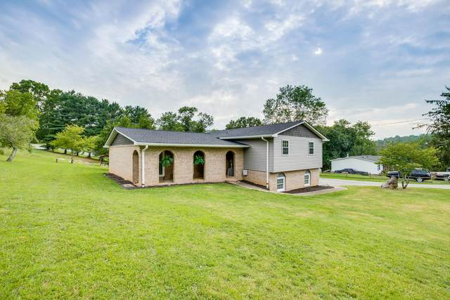 780 Dry Branch Road, Bluff City, TN 37618 (MLS #9926644) :: Conservus Real Estate Group
