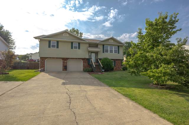 319 Gray Station Road, Gray, TN 37615 (MLS #9926963) :: Tim Stout Group Tri-Cities