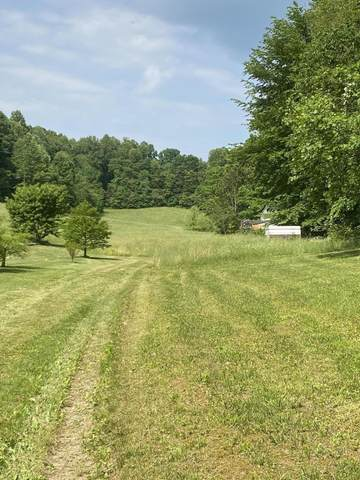 365 Barrett Lane, Church Hill, TN 37642 (MLS #9927103) :: Red Door Agency, LLC