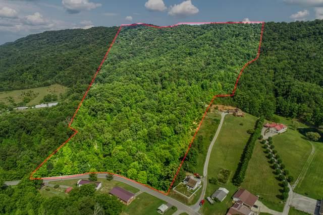 1773 Goshen Valley Road, Church Hill, TN 37642 (MLS #9927193) :: Red Door Agency, LLC