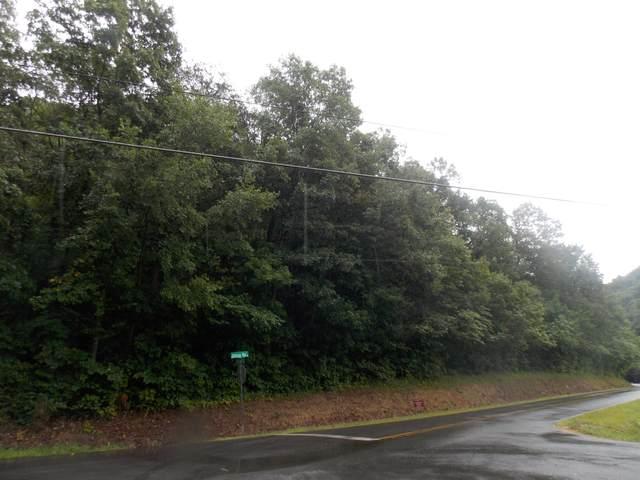 00 Johnson Hollow Road, Blountville, TN 37617 (MLS #9927324) :: Conservus Real Estate Group