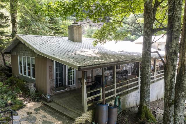 117 Rustic Log Cabin Lane, Roan Mountain, TN 37687 (MLS #9927431) :: Highlands Realty, Inc.