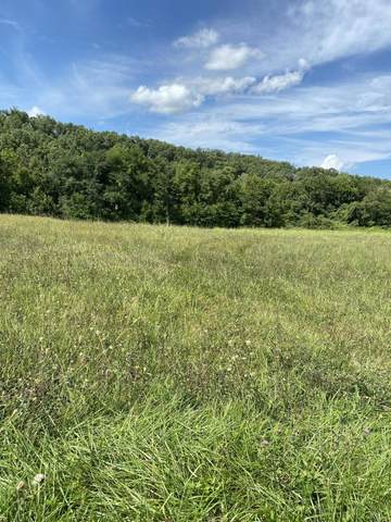 003 Old Knoxville Hwy Highway, Greeneville, TN 37743 (MLS #9927478) :: Conservus Real Estate Group