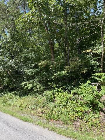04 Old Knoxville Highway, Greeneville, TN 37743 (MLS #9927479) :: Conservus Real Estate Group