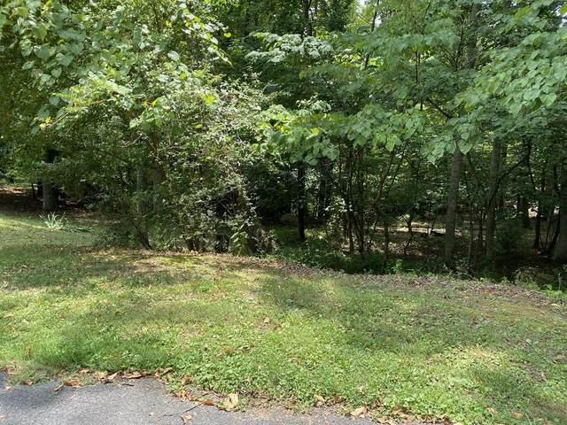Lot 30 Seven Oaks Drive, Mount Carmel, TN 37645 (MLS #9927500) :: Red Door Agency, LLC