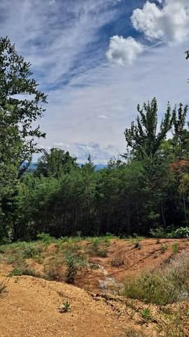 0 English Ivy Trail, Jonesborough, TN 37659 (MLS #9927569) :: Red Door Agency, LLC