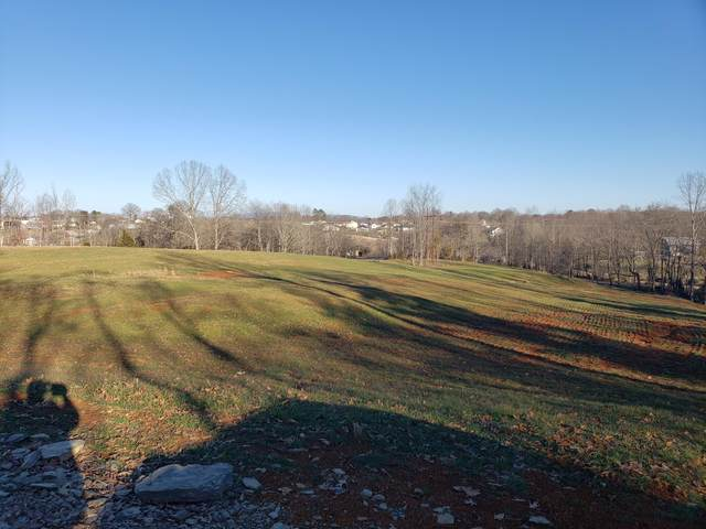 Tract 2 Ford Lane Road, Johnson City, TN 37615 (MLS #9927677) :: Conservus Real Estate Group