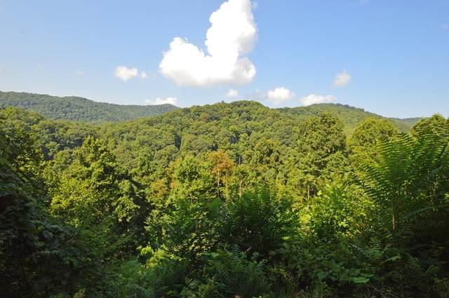 Lot 64 Tulip Poplar Trail, Butler, TN 37640 (MLS #9927693) :: Tim Stout Group Tri-Cities