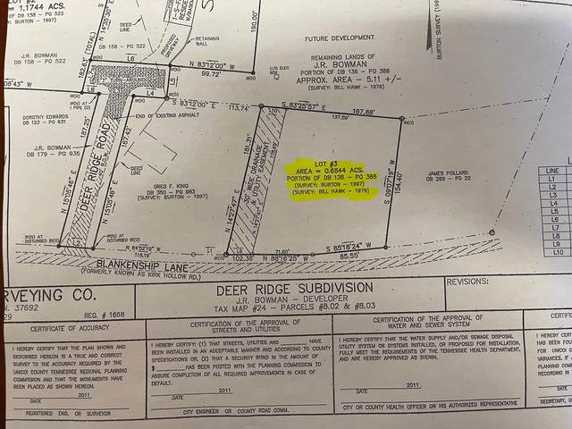 Lot 3 Blankenship Lane, Erwin, TN 37650 (MLS #9927727) :: Conservus Real Estate Group