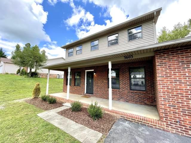 3603 Ian Drive, Johnson City, TN 37604 (MLS #9927759) :: Red Door Agency, LLC