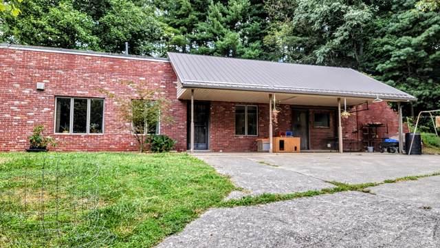 662 Fall Creek Road, Blountville, TN 37617 (MLS #9927911) :: Red Door Agency, LLC