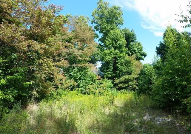 Tbd Locust Lane, Butler, TN 37640 (MLS #9927913) :: Highlands Realty, Inc.