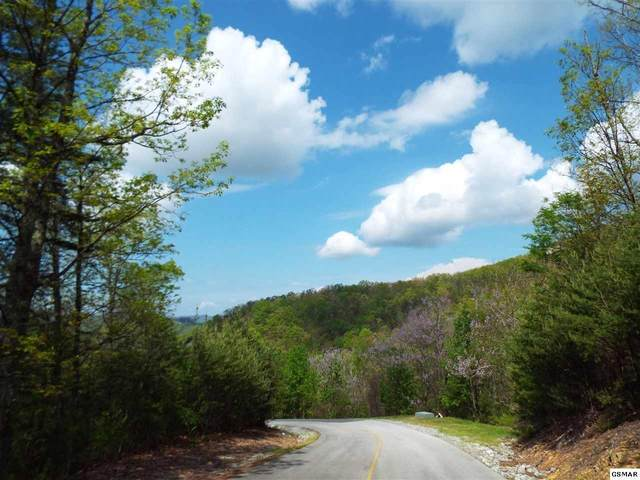 Lot 63 Redtail Road, Sevierville, TN 37862 (MLS #9927929) :: Tim Stout Group Tri-Cities