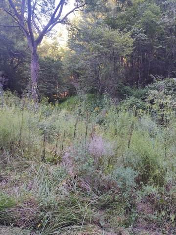 316 Bear Hollow Road, Bristol, TN 37620 (MLS #9928114) :: Red Door Agency, LLC