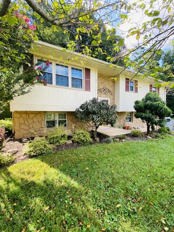 218 Taylor Avenue, Elizabethton, TN 37643 (MLS #9928148) :: Red Door Agency, LLC