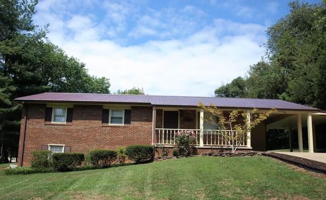 117 Chappell Road, Surgoinsville, TN 37873 (MLS #9928165) :: Red Door Agency, LLC