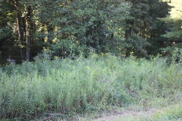 000 Laurelwood Drive, Lot #56, Mountain City, TN 37683 (MLS #9928243) :: Bridge Pointe Real Estate