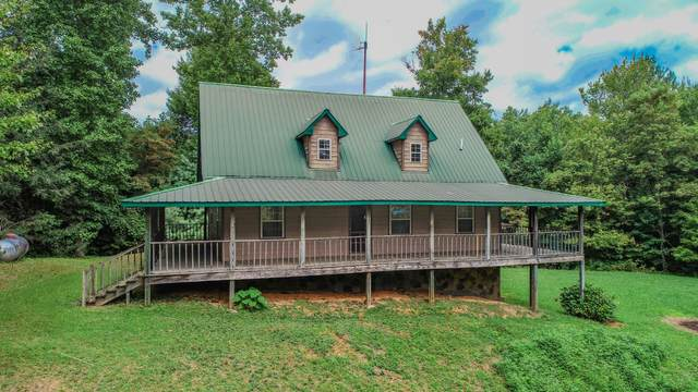 994 Ridge Hollow Road, Del Rio, TN 37727 (MLS #9928368) :: Conservus Real Estate Group