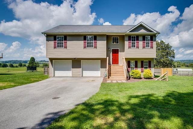 533 Painter Road, Fall Branch, TN 37656 (MLS #9928370) :: Tim Stout Group Tri-Cities