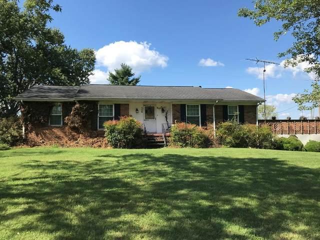 320 Robertson Creek Road, Bulls Gap, TN 37711 (MLS #9928435) :: Highlands Realty, Inc.